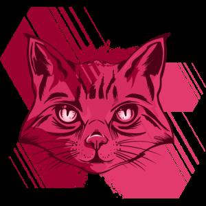 Katzengesicht Illustration Kunst Darstellung Katze