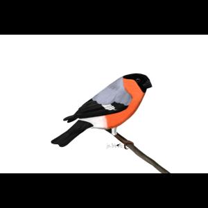 jz.birds Gimpel Vogelmotiv Illustration