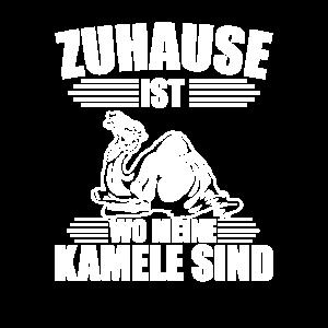 Kamel Paarhufer