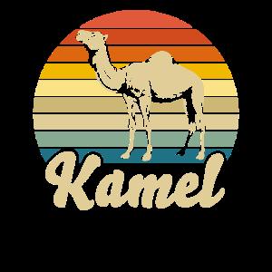Kamel Trampeltier