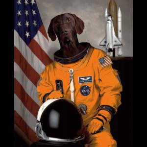 Deutsch Kurzhaar Besitzer Liebhaber Astronaut