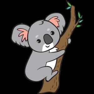 Koala - auf Baum
