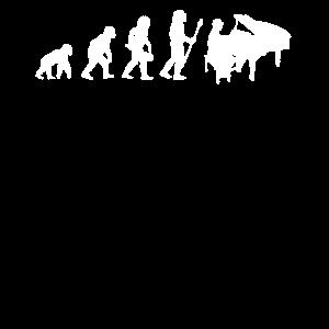 Evolution Entwicklung Klavier Piano