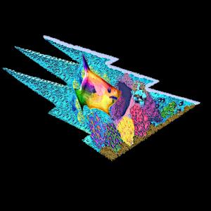 Tiermotiv mit eigener Note - bunter Südsee-Fisch