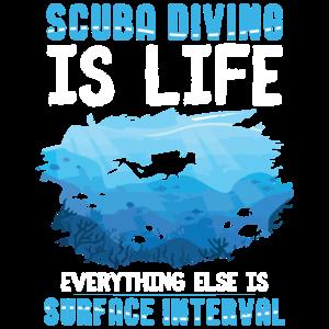 Tauchsport   Open Water Diver Tauchen Geschenkidee