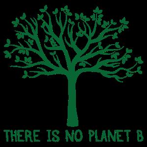 There is no Planet B Umweltschutz Geschenk