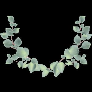 zarter Eukalyptus Zweige als halber Kranz