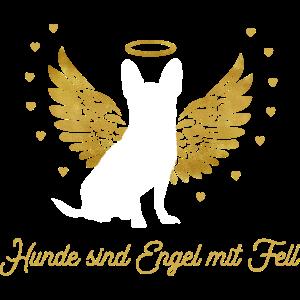 Chihuahua Hunde sind Engel mit Fell - Geschenk