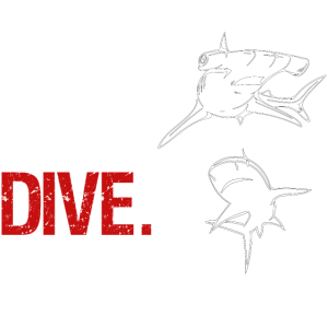 Eat Sleep Dive Repeat - Hammerhai