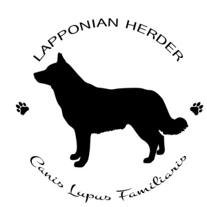Lapponian herder