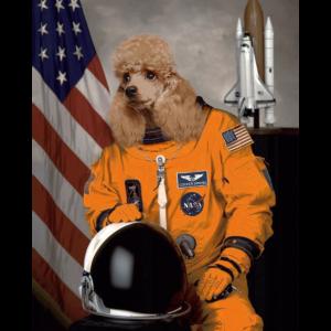 Cocker Spaniel Besitzer Liebhaber Astronaut