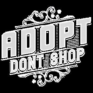 adopt dont shop - Tierheim - Haustier - Katze Hund