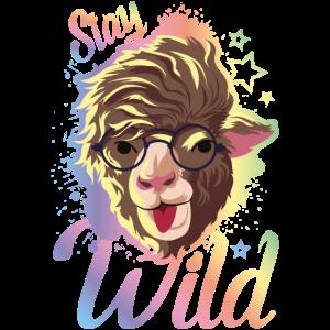 alpaca hipster bunt wild