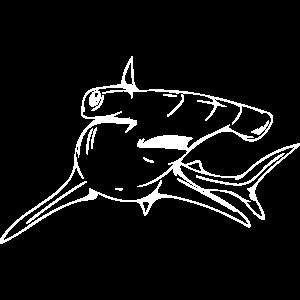 Gefährlich eleganter Hammerhai