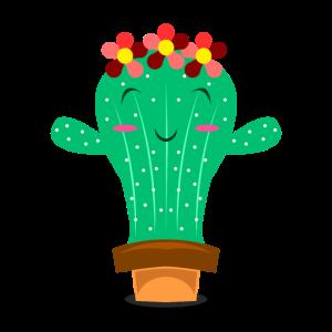 Hug me Kaktus