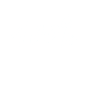 100 % -100 Percent -Prozent
