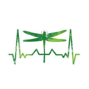 Libelle Herzschlag
