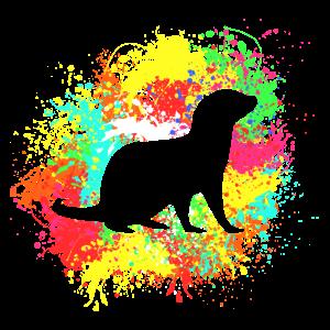 Otter Splash Geschenk für farbenfrohe Otter Fans
