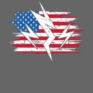 USA United States Strom Elektroauto Geschenk