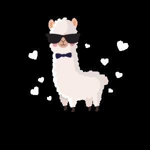 Alpaka Cute