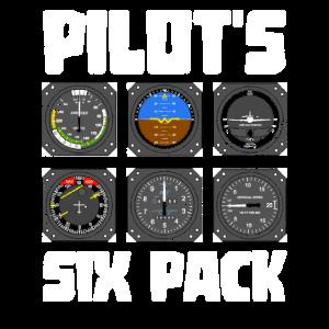 Pilot Intrumente