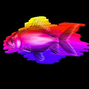 rainbow fisch