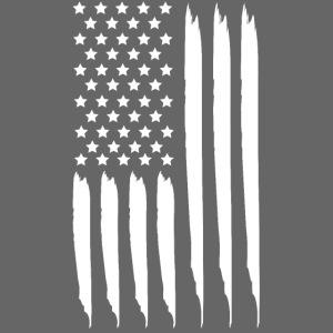EEUU flag