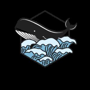 Blauwal im Wellengang