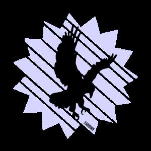 Adler Vogel Raubtier Natur Geschenk