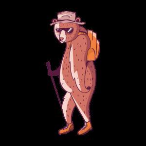 Wandernder Bär Braunbär Wanderer