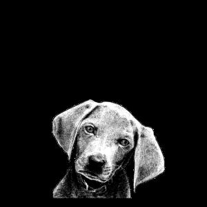 Nettes Hundet-shirt