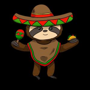 Mexican Sloth