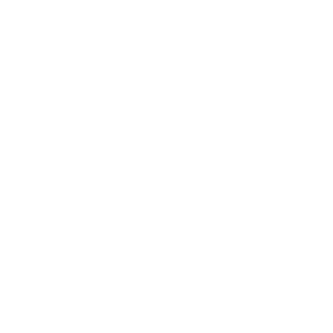 RESPEKT THE FIN - HAIFISCH