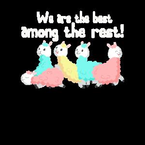 Alpaca funny team