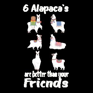 Alpaca Friends