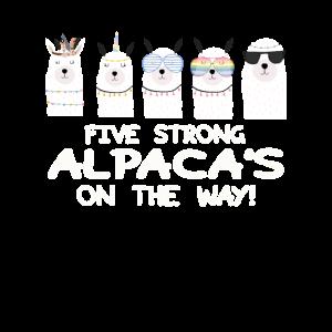 Starkes Alpaka Team