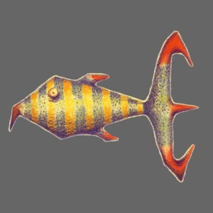 Zebrakrallen Fisch