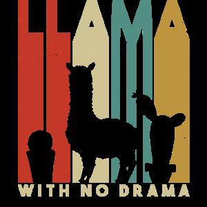 My Lama needs no drama, alpaka kaktus, sprüche