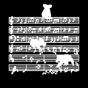 Musiklehrer Note Musiker Koala-Bär