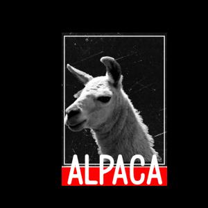 Alpaca Vintage Schwarz Weiß