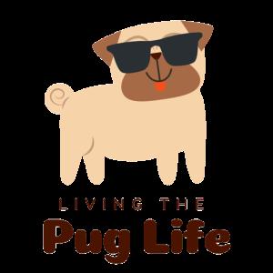 Dog, Pug, Sunglass, Geschenkidee, Life, Animal
