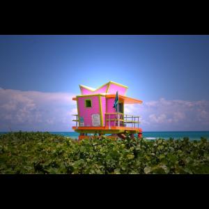 Miami Feeling