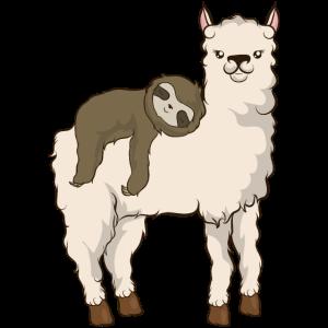Faultierreiten Lama Entzückender flauschiger Lama & Faultier