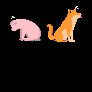 Schweinchen Hündchen Tierhaltung