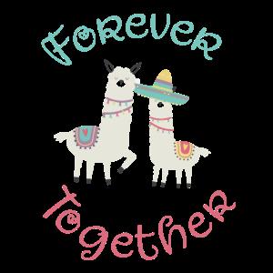 Für immer zusammen, Lama, Alpaka, Geschenk