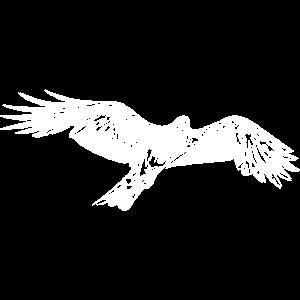 Eleganter fliegender Falke