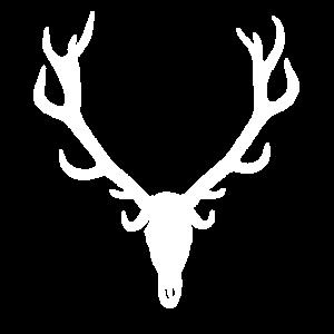 Hirsch - Stag - Red Deer - Rothirsch - Geweih