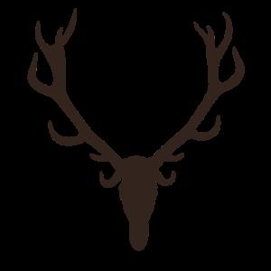 Red Deer Stag - Rothirsch - Hirsch - Hunt - Jäger