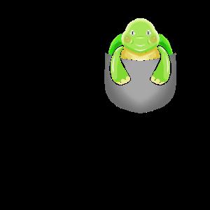 Schildkröte in Brusttasche Ozean Schildkröten Lieb