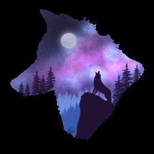 Wolf und Galaxie